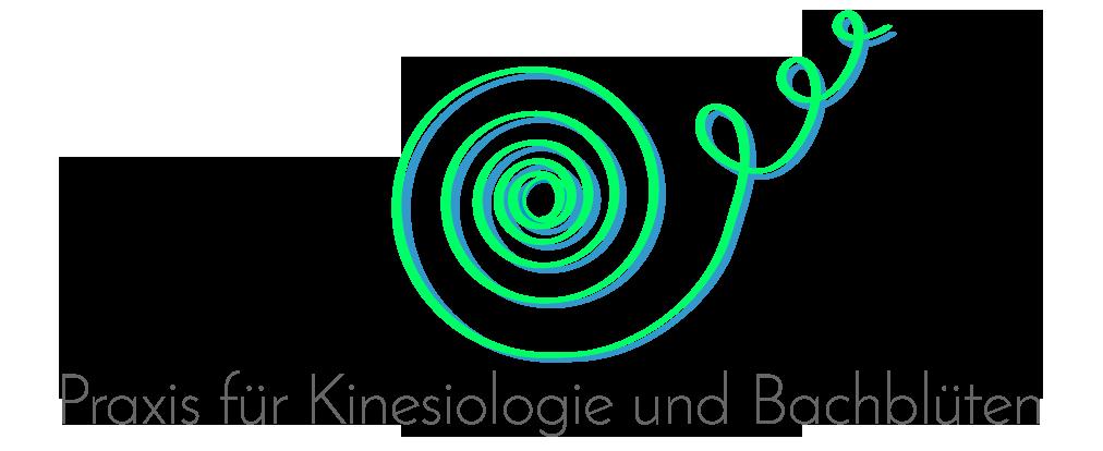 Praxis für Kinesiologie und Bachblüten - Veronika Lerch